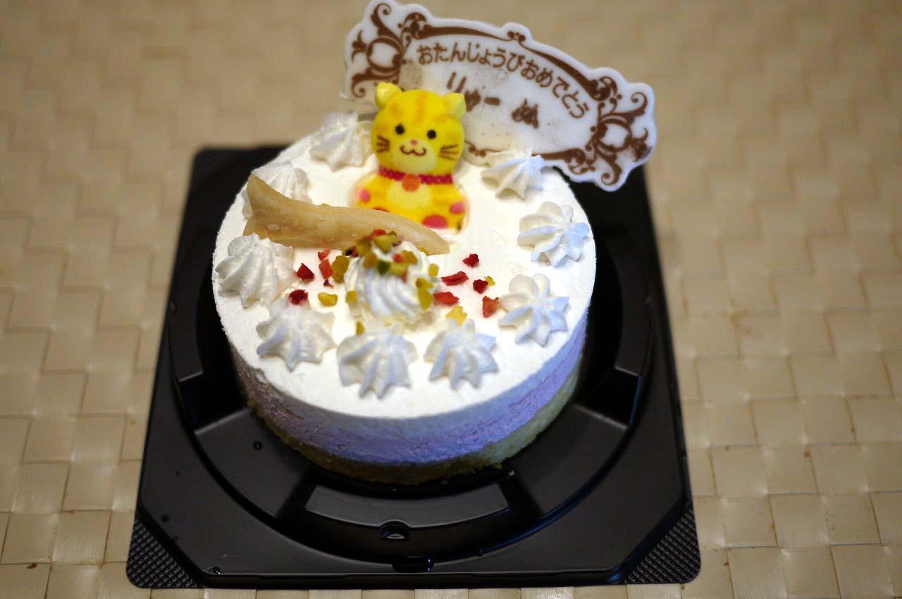 猫用ケーキ